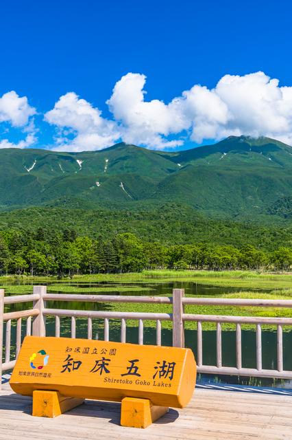 知床五湖 知床連山